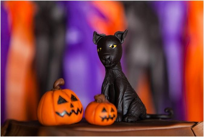 frisco-party-photographer-halloween-birthday_101114_2